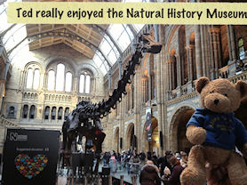 Ted really enjoyed the Natural History Museum
